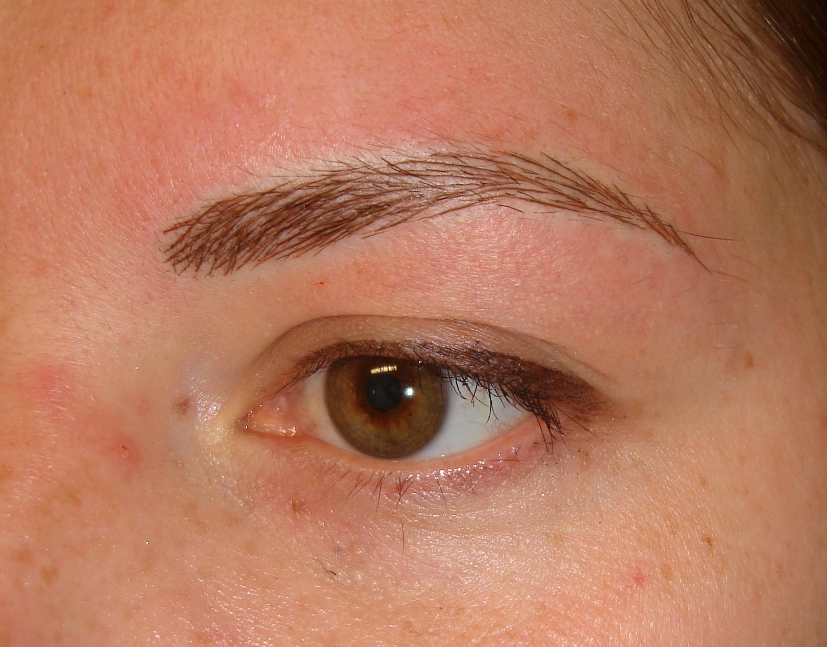 Case Study - After Image - Eyebrows Microblading